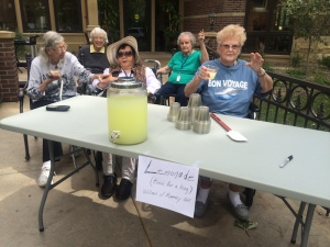 Lemonade Stand, Willows of Ramsey Hill, St. Paul, MN