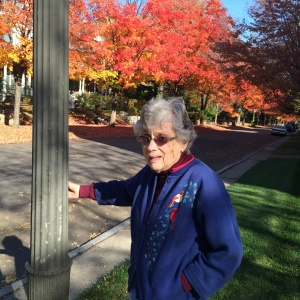 fall leaf tour, willows of ramsey hill, senior living activities, fall fun