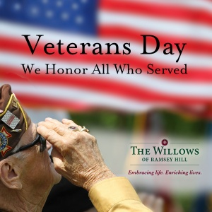 happy veterans day 2016, willows of ramsey hill